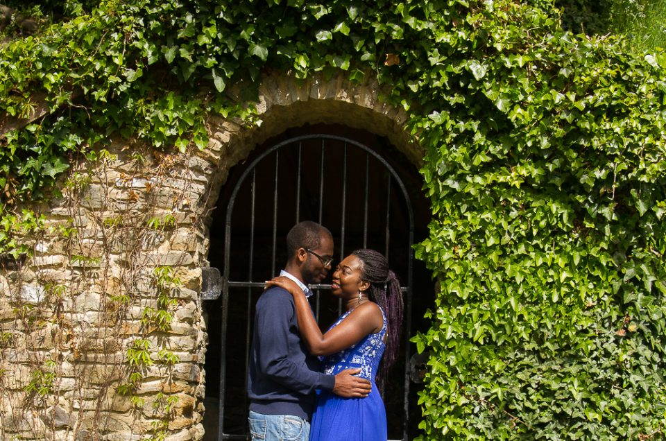 Dayo & Femi Engagement.